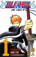 Mangas Bleach d'occasion à vendre